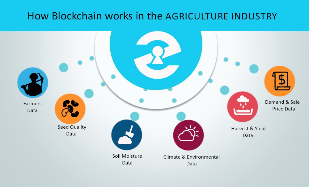 Blockchain in Agriculture application